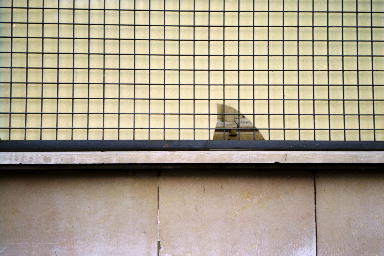 nicolas-verhelpen_vague_photography_14